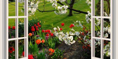 geniet van je tuin